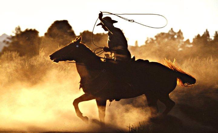 cuál es el trabajo de un vaquero