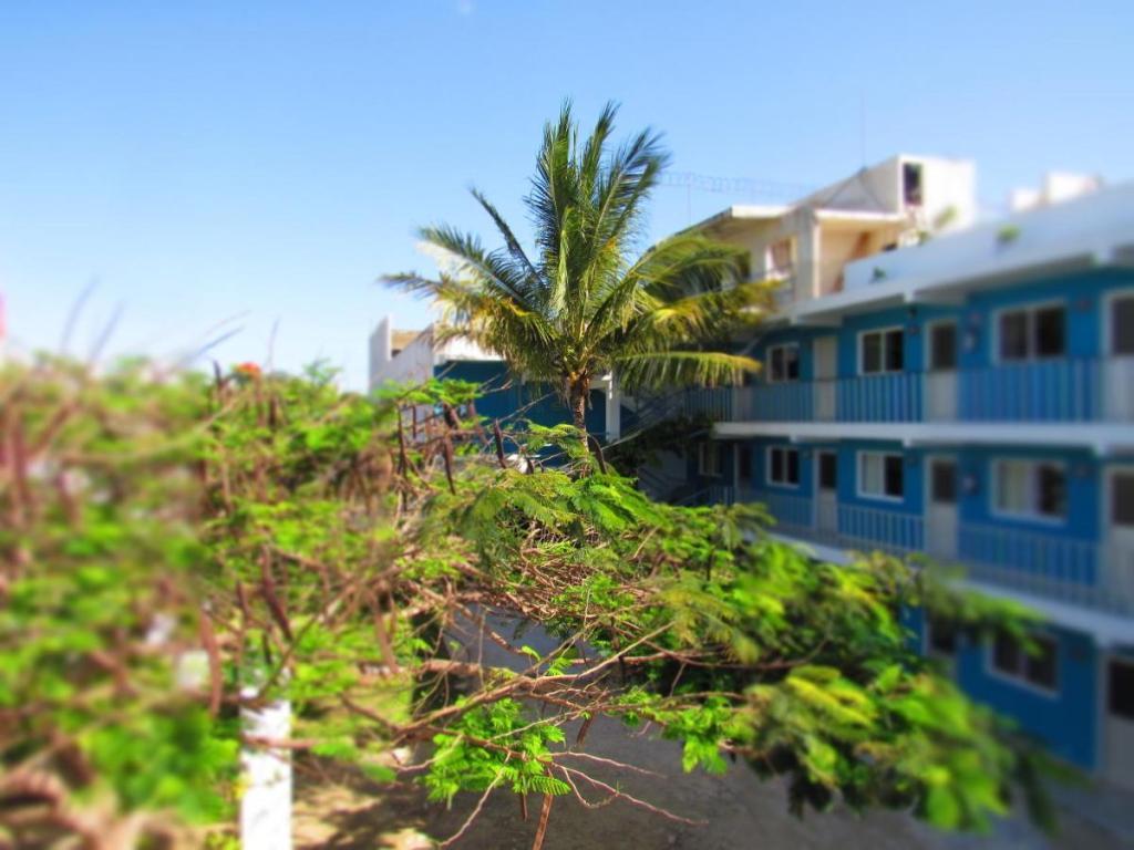 Blue Coconut Cancun Hotel - hotel 2 estrellas cancun
