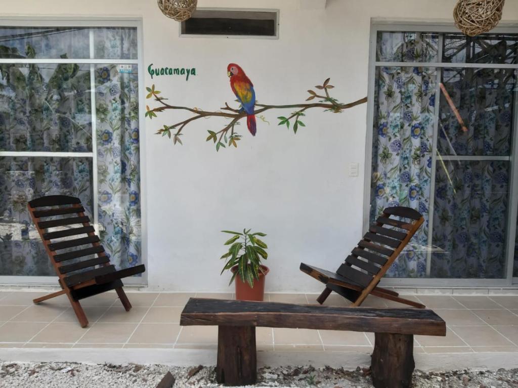 la casa de las aves - donde alojarse en bacalar