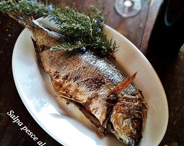 Salpa pesce al forno