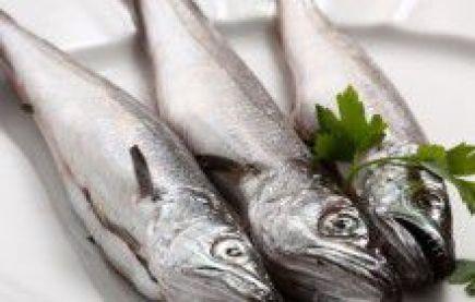 Risultati immagini per naselli pesce