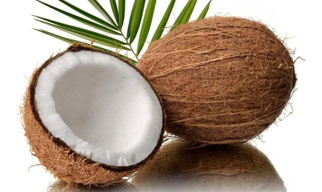 Risultati immagini per cocco