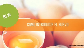 introducir el huevo en bebés