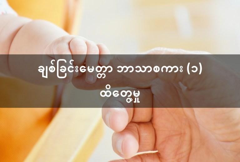 ချစ်ခြင်းမေတ္တာ ဘာသာစကား (၁) ထိတွေ့မှု