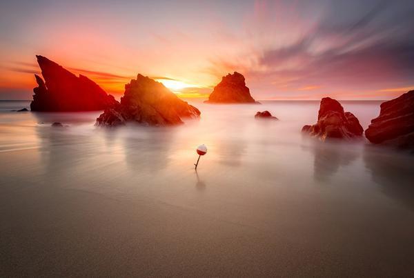 Image result for Sunset Philosophy