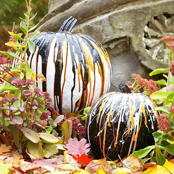 Owl Theme Pumpkin Pattern