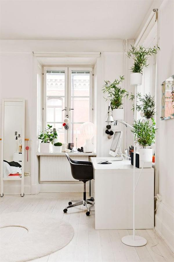 Green is a refreshing color while white makes a space look so much wider. Plus a pristine white room would satisfy your OCD side to feel calm and ready for work.