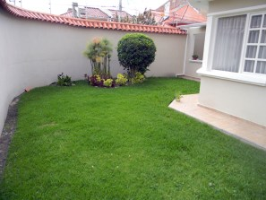 Many in-town and even suburban homes have small yards.