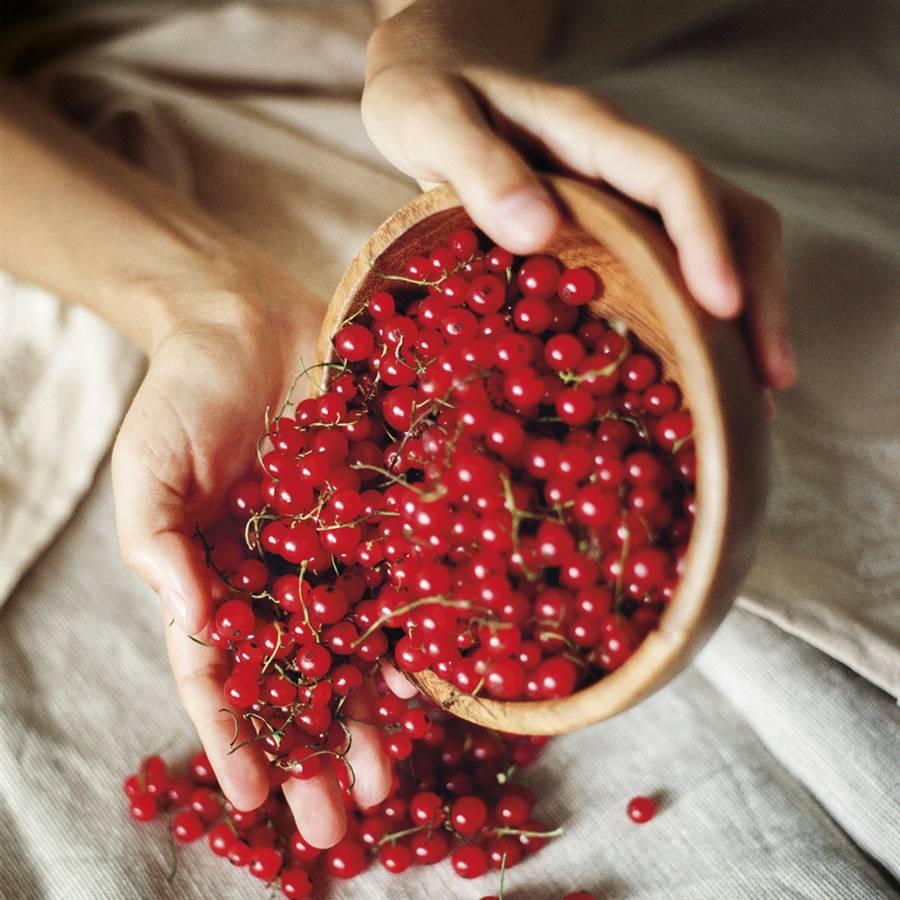 Frutos rojos dieta antiestrogenica