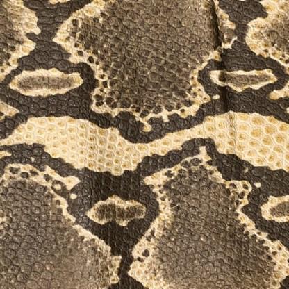 Python Brown-0