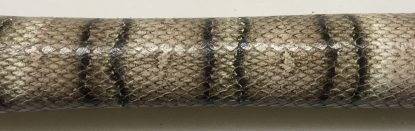 Snake Tiger-1090