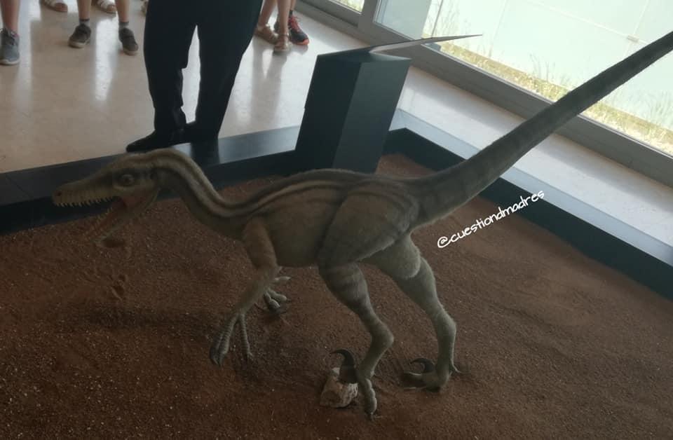 Museo de Paleontología de Castilla-La Mancha. Imagen del velociraptor