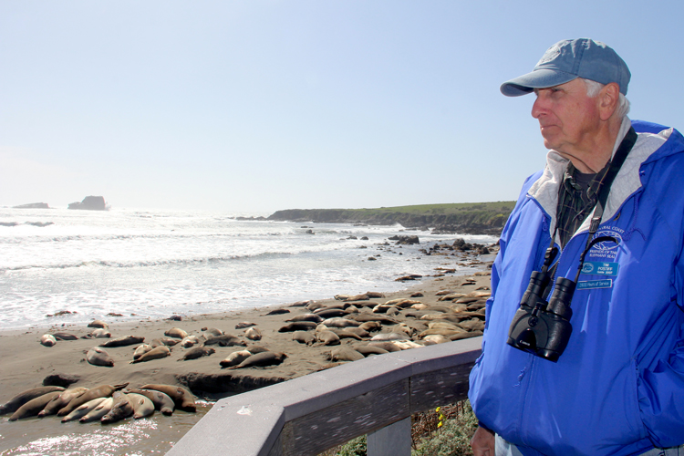 Tim Postiff, a Friends of the Elephant Seal research member, at Piedras Blancas Elephant Seal Rookery.