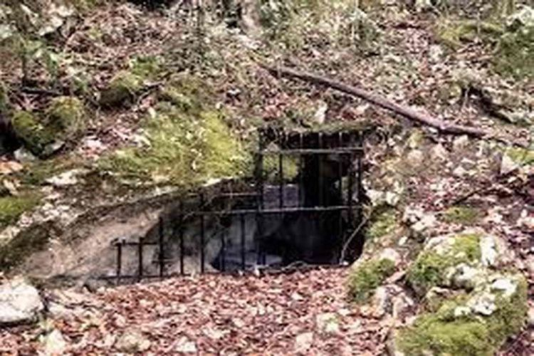 Entrada a la cueva de la Garma