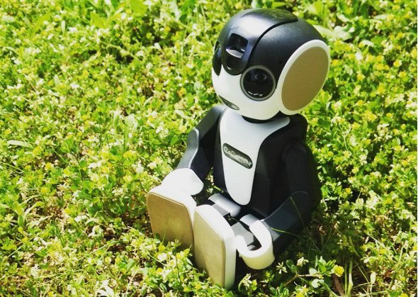 Robots y Drones Robotcito