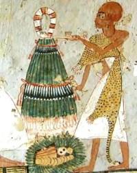 Cebolla Egipto
