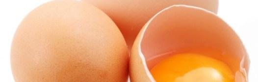 Los huevos aportan muchos nutrientes