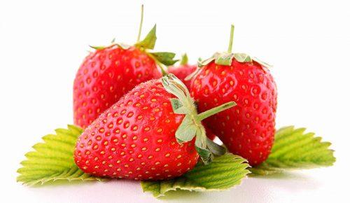 fresas-hoja