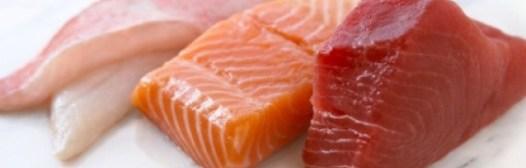 pescados-salmon-atun
