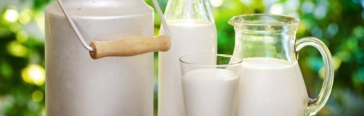 leche botella