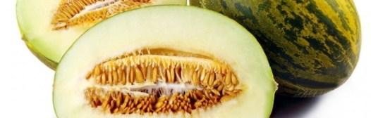 melon piel de sapo