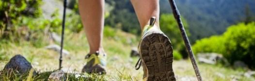 nordic walking ejercicio aerobico