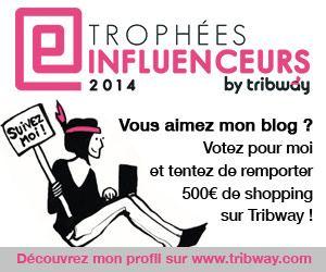 Trophées Influenceurs 2014