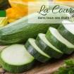 dossier courgette - Shirataki de konjac aux écrevisses, citron et coco