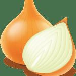 oignon - Dossier : Fruits et légumes de saison au mois d'octobre