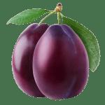 prune - Dossier : Fruits et légumes de saison au mois d'août