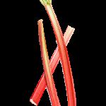 rhubarbe - Dossier : Fruits et légumes de saison au mois de mai