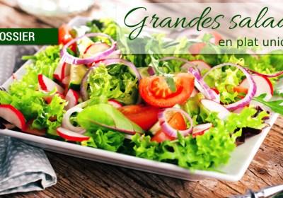 dossier grandes salades - Dossier : Grandes salades version plat unique !