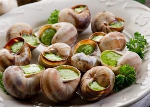 escargots 01 - Escargots de Bourgogne