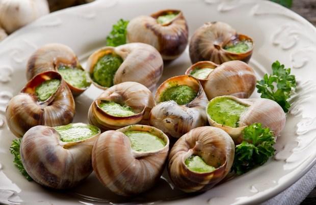 escargots 01 620x403 - Escargots de Bourgogne