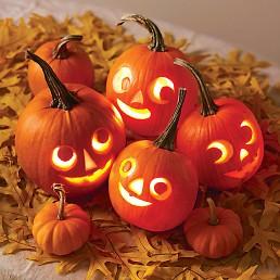 pumpkin designs.jpg1