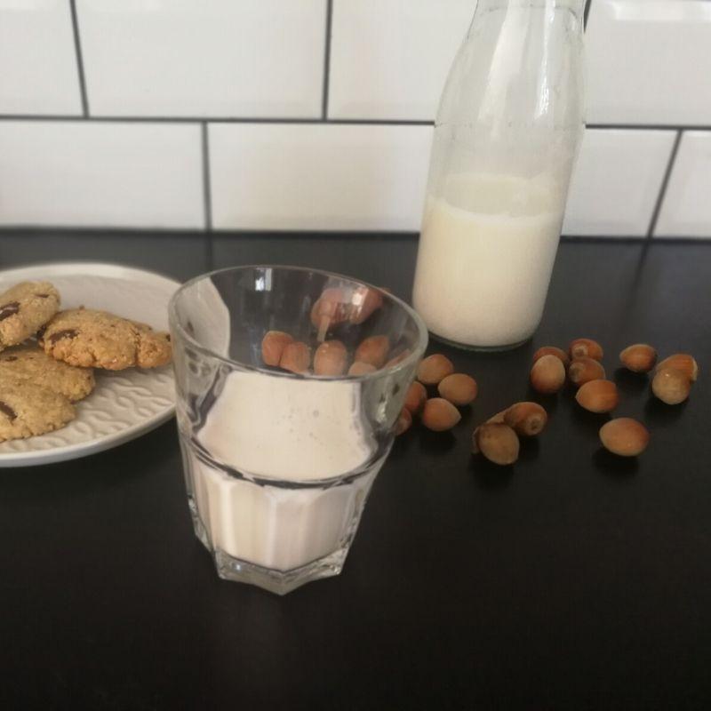 Faire son lait de noisettes maison