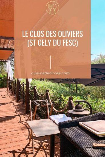 Le Clos des Oliviers à St Gely du Fesc (34)