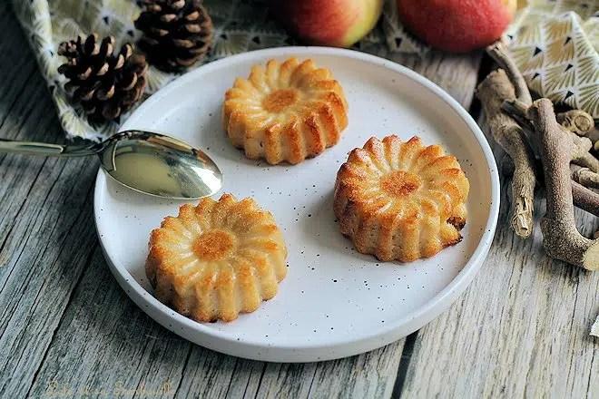 Clafoutis pommes amandes,clafoutis aux pommes sans beurre,clafoutis aux pommes facile et rapide,clafoutis aux pommes minceur,clafoutis aux pommes facile