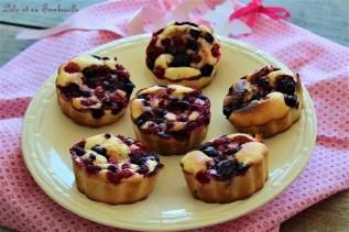 Douceurs aux fruits rouges (2)