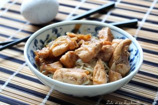 Emincés de poulet au miel & cannelle (3)