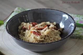 Risotto aux tomates séchées & poulet (6)