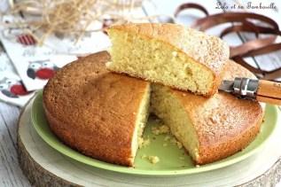 Gâteau au yaourt (3)