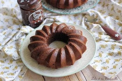 Cake à la pâte à tartiner (2)