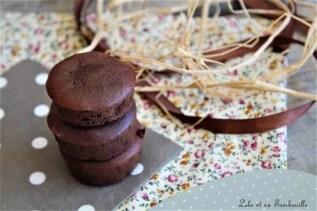 Bouchées fondantes au chocolat (2)