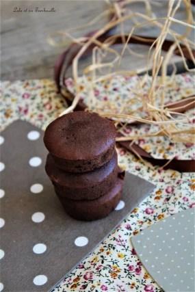 Bouchées fondantes au chocolat (3)