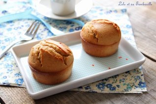 Muffins moelleux coeur de pralinoise (3)