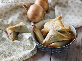 Samossas de boeuf & mozzarella (2)