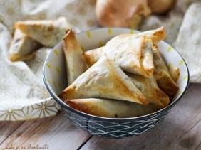 Samossas de boeuf & mozzarella (4)