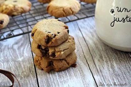 Cookies pâte de spéculoos & pépites de chocolat (6)