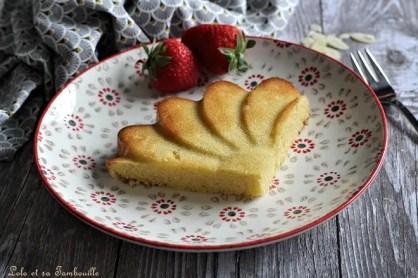 Gâteau Maury (2)